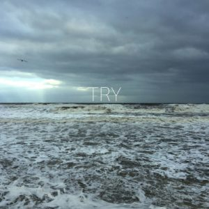 Teri Sidgwick Try Cover